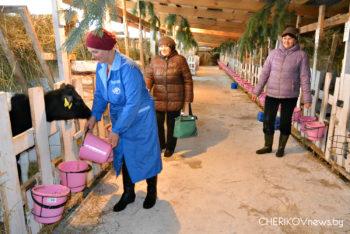 Повысить профессиональный уровень работникам сельского хозяйства Чериковщины помогает ГПЛ № 11