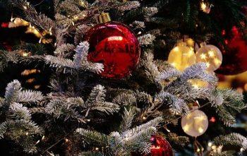 Жителей и гостей города Черикова приглашают отпраздновать Старый Новый год