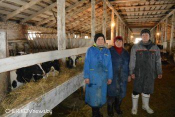На МТК «Соколовка» Чериковского района работают на результат