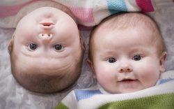 94 двойни и 3 тройни родилось в Могилевской области в прошлом году