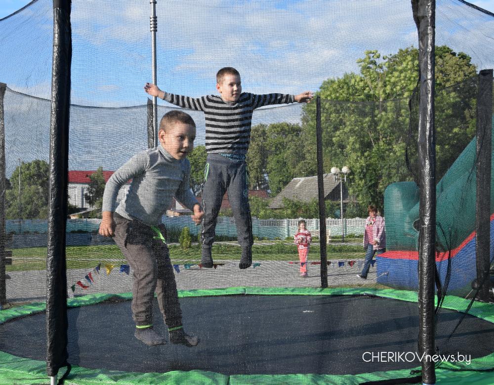 День молодежи отметили в Черикове