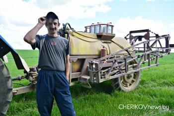 Апрацоўку палеткаў вядуць аграрыі Чэрыкаўскага раёна