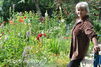 Ботанический сад на приусадебном участке Натальи Божковой из агрогородка Майский