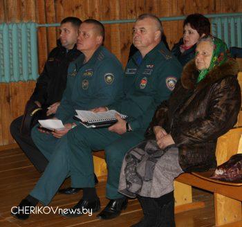 В деревне Гронов состоялся сельский сход
