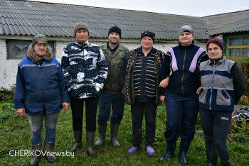 У работников молочно-товарного комплекса «Чериков» ОАО «Экспериментальная база «Чериков» работа спорится