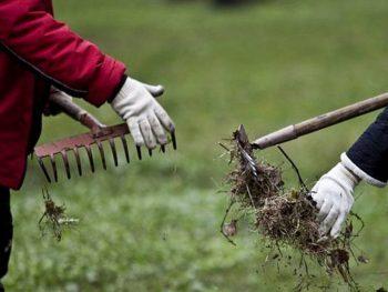 Благоустройство и чистота: итоги месячника в Чериковском районе
