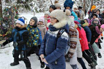 Баба Яга, фиксики и Новогоднее приключение. Чериковский центр туризма организовал для ребят мероприятие в лесу