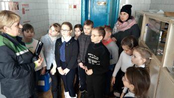 В центре туризма города Черикова не остаются в стороне от проблем животных