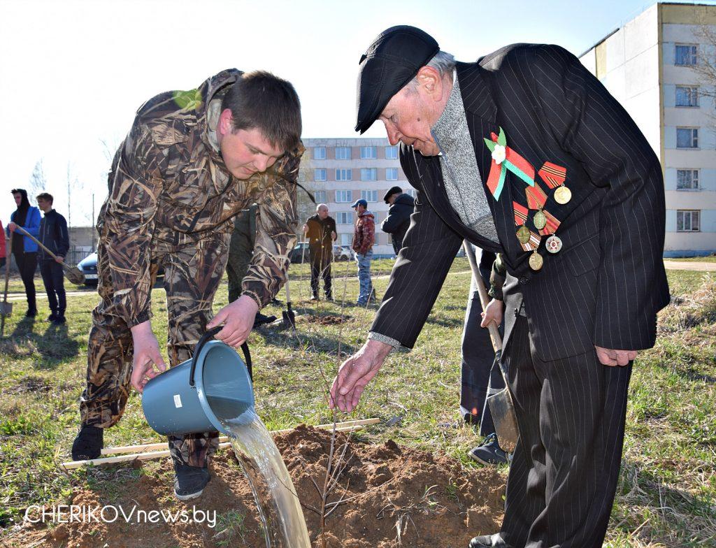 К 75-летию освобождения Беларуси от немецко-фашистских захватчиков в Черикове была заложена аллея памяти