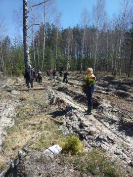 Сотрудники Чериковского отделения Департамента охраны приняли участие в акции «Неделя леса»