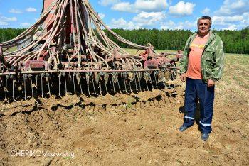 Поля ПТУП «Агрокомплекс «Светлый» засеяны кукурузой