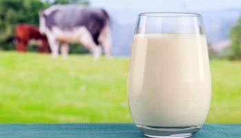 На Чериковщине за качественное молоко — соответствующие выплаты