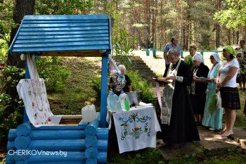 В деревне Рогалино Чериковского района провели чин освящения криницы