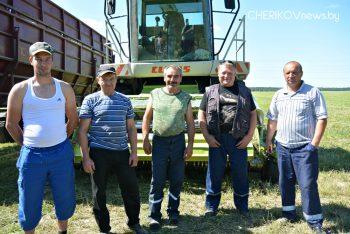 Заготовка кормов в Чериковском районе набирает обороты