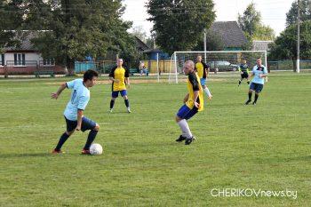 Ф/К «Чериков» разгромил быховский «Днепр»