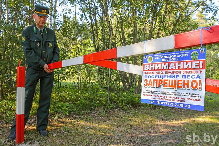 Запрет на посещение лесов действует в 21 районе Беларуси